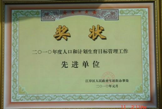 人口老龄化_武汉市2010年人口